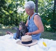katzenhaltung infos tipps zur artgerechten haltung von katzen. Black Bedroom Furniture Sets. Home Design Ideas